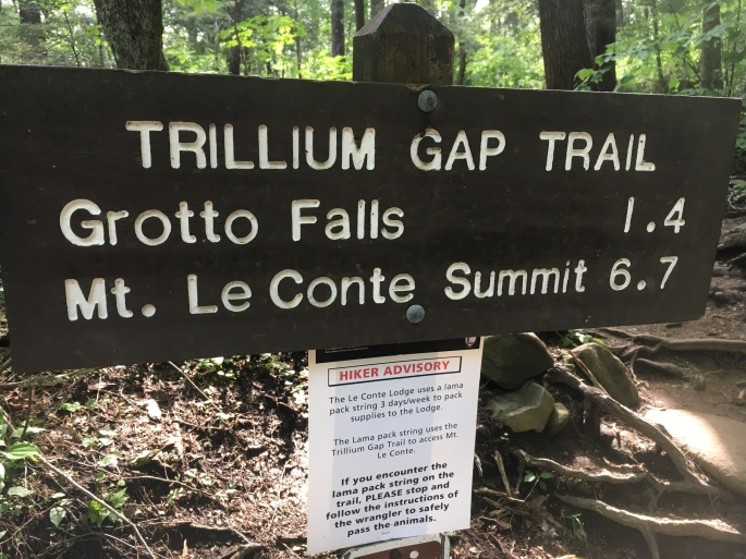 Grotto Falls sign
