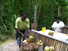Ooick making us coconut water