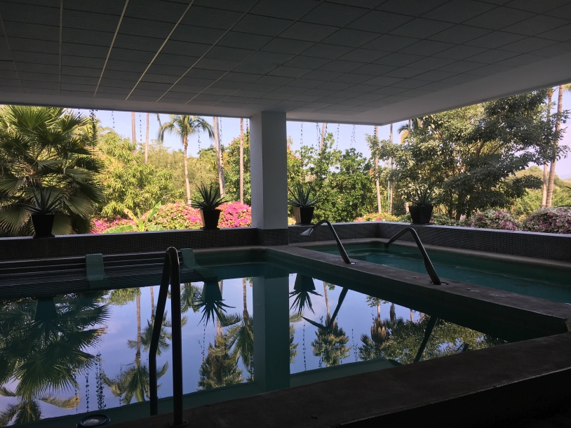 Immersion Pool